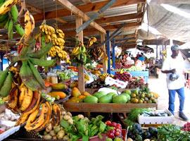 The top 10 things to do at the amazing San Ignacio Market Day
