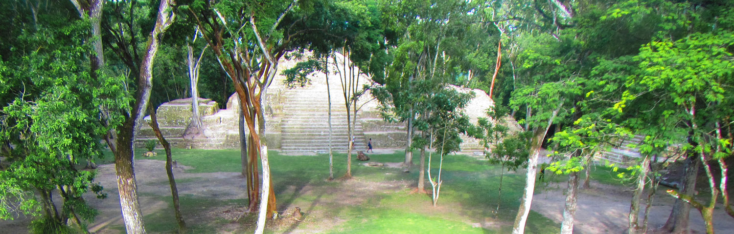 Cahal Pech Mayan Ruins Birding Tour with Maya Walk Tours
